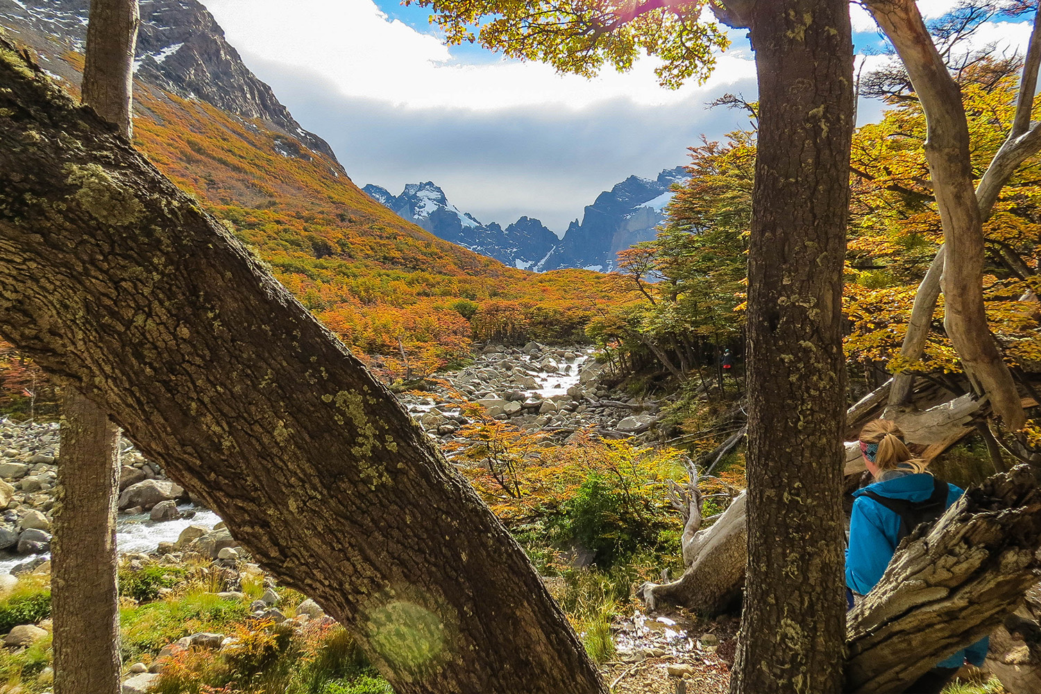 tours and travel in chile, Torres del Paine, 11